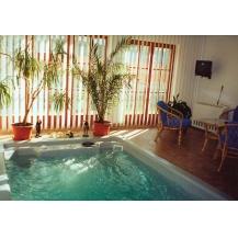 Swim Spa XL